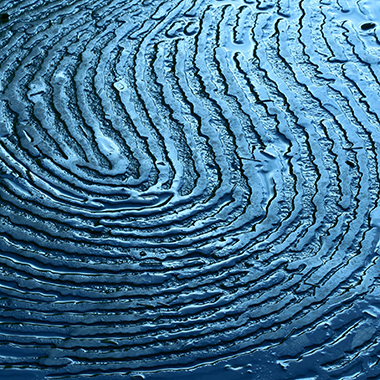 Close up of blue fingerprint